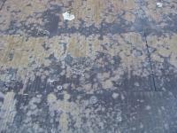 コロニアル屋根3